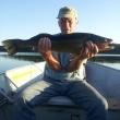 Allen Achterhof 31 inch Walleye