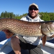 Ben Beattie 44.5 inch Northern Pike